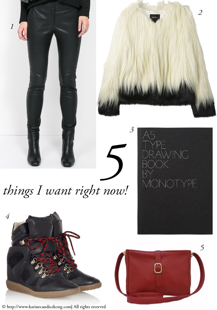5 THINGS I WANT RIGHT NOW! 02/01/2015