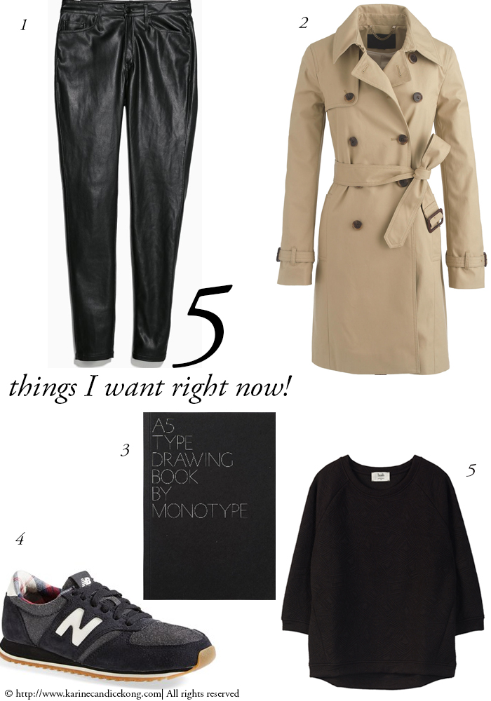 5 THINGS I WANT RIGHT NOW! 16/01/2015
