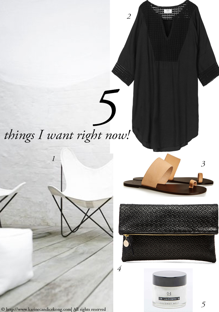 5 THINGS I WANT RIGHT NOW! 08/05/2015 For more inspiration, read on www.karinecandicekong.com