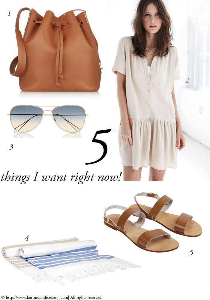 5 THINGS I WANT RIGHT NOW! 19/06/2015 Read on www.karinecandicekong.com