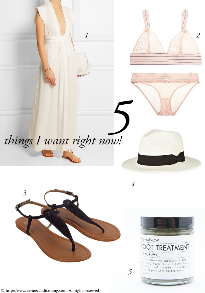 5 THINGS I WANT RIGHT NOW! 03/07/2015 Read on www.karinecandicekong.com