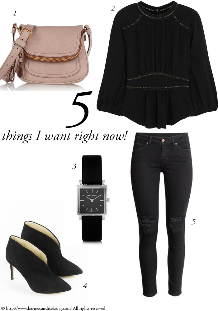 5 Things I want right now! 14/08/2015. Read on www.karinecandicekong.com