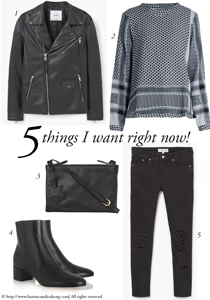 Fall Look | 5 Things You Want Right Now!