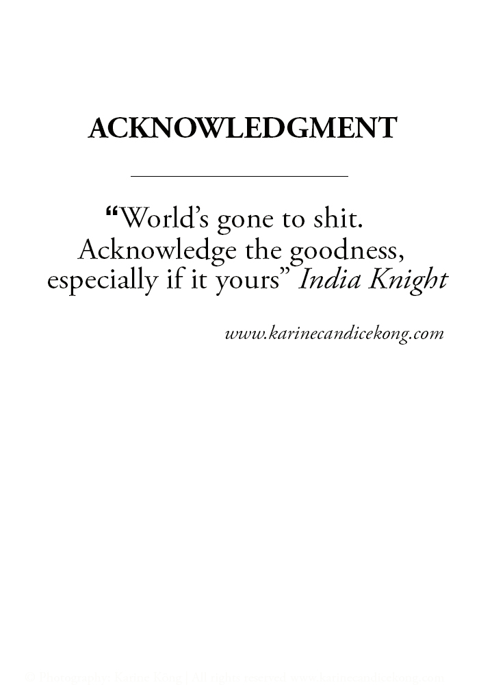 """World's gone to shit. Acknowledge the goodness, especially if it yours"""" India Knight via www.karinecandicekong.com"""